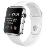 Apple Watch MJ3V2TU/A 42 mm