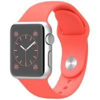 Apple Watch MJ2W2TU/A 38 mm