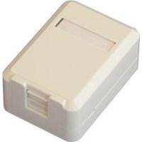 DORAX 2 Port Shutter Kapaklı Sıva üstü Data Prizi (Boş) - DR-6104-2PB